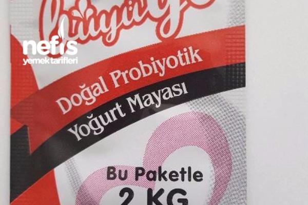 Doğal Probiyotik Yoğurt Yapımı