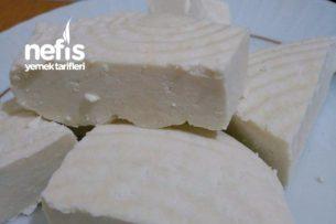 Peynir ( Pratik Ve Doğal ) Tarifi