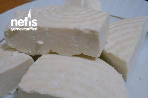 Peynir ( Pratik Ve Doğal )