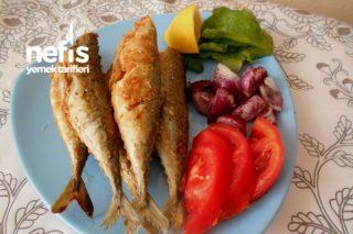 Mısır Unlu Baharatlı Uskumru Balık Kızartması Tarifi