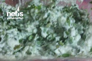 Bahçemden Doğal Semizotu Yoğurtlamam Tarifi