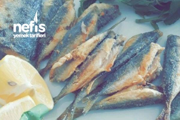 Kızartma Tava Balık Tarifi