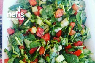 Omega 3 Semiz Otu Salatası Tarifi