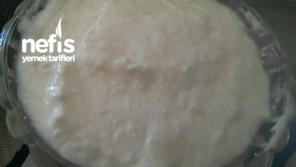 Evde Labne Peynir Yapımı