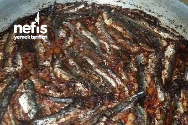 Fırında Hamsi Balık