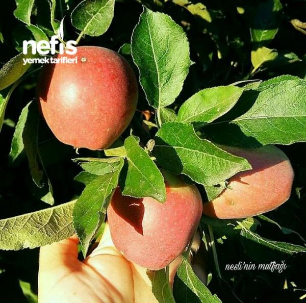 Muhteşem Elma Tatlısı