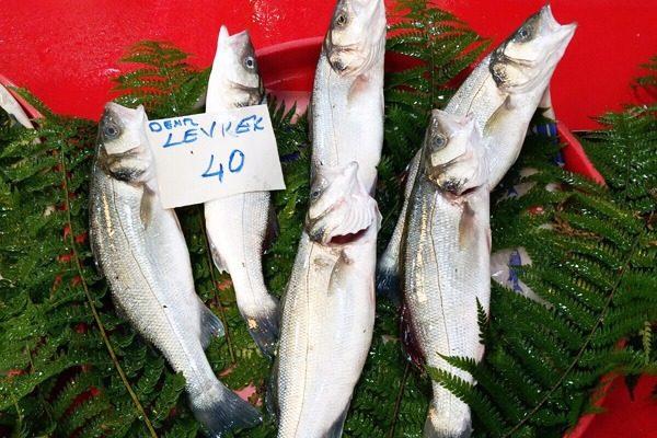 Levrek Nasıl Pişirilir? Levrek Balığı Hakkında Her Şey Tarifi