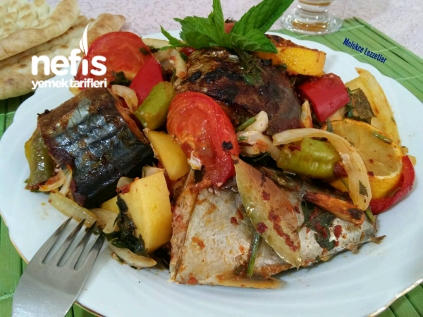 Karadenizin İncisi Bol Sebzeli Palamut Ekşilisi (Trabzon)