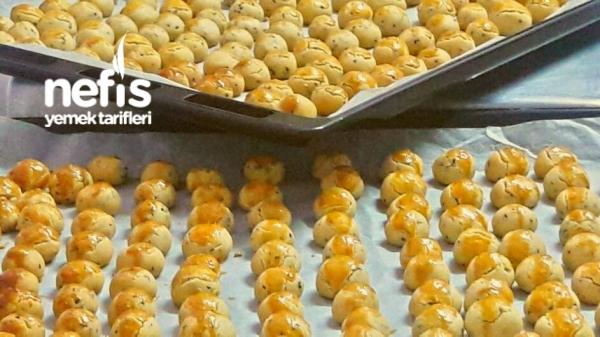 Çörek Otlu Tuzlu Kurabiye (muhteşem)