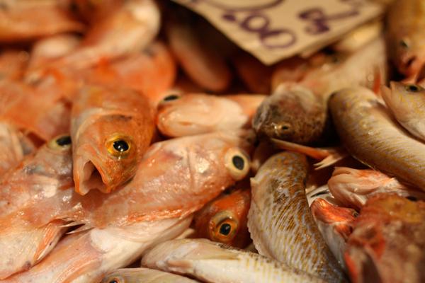 Enfes incelik, ya da evde balık tuz nasıl