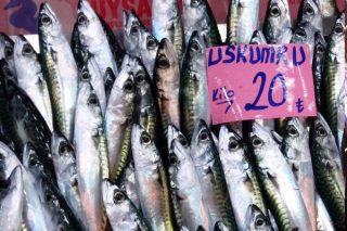 Uskumru Balığı Nasıl Pişirilir? Faydaları, Kalori ve Besin Değerleri Tarifi