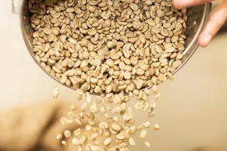 Yeşil Kahve Zayıflatır Mı? Faydası Nedir? Tarifi