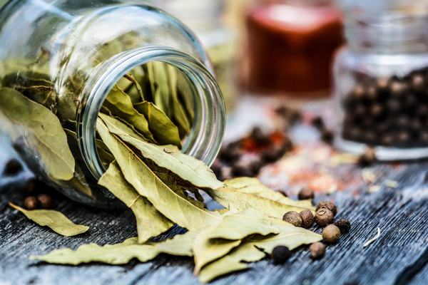 Defne Yaprağının Faydaları, Defne Yaprağı ile Yapılan Yemekler Tarifi
