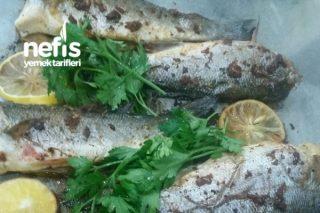 Fırında Levrek Balık Tarifi
