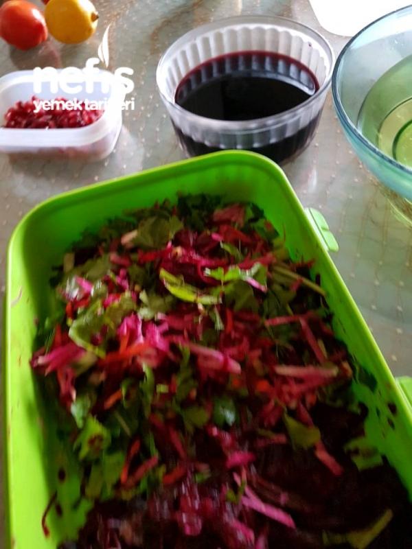 Kış Salatası