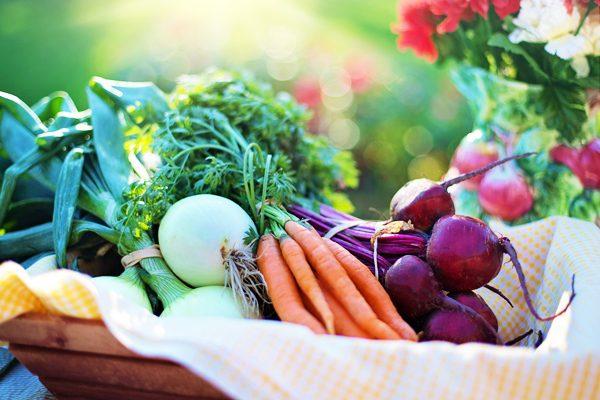 Sebzeler İsimleri ve Sebze Diyeti Tarifi