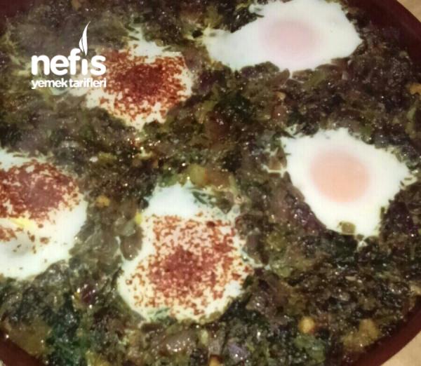Yumurtalı Ispanak (protein Deposu)