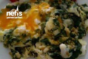 Ispanak Kökü Yumurtalı Tarifi