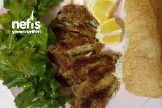 Balık Tava (Hamsi – İstavrit) Tarifi