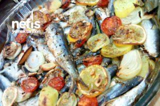 Balık Kızartmasını Unutturan Hafif Sağlıklı Ve Yumuşacık Fırında Sardalya Tarifi