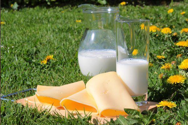 Laktoz Nedir? İntoleransı Nasıl Anlaşılır? Tarifi