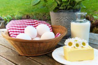 Probiyotikler: Faydaları Nelerdir? Hangi Besinlerde Bulunur? Tarifi