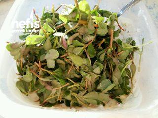 Semizotu Faydaları Nelerdir? Şifalı Semizotu Yemekleri Tarifi