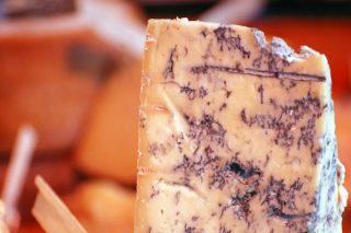 Küflü Peynir Faydaları Nelerdir? Nasıl Yapılır? Yenir Mi?