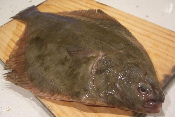Dil Balığı Nasıl Pişirilir? Faydası Nedir? Tarifi