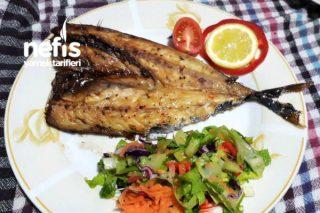 Fırında Uskumru Balığı Tarifi