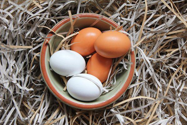 Gezen Tavuk Yumurtası Faydaları, Besin Değerleri ve Vitaminli Tarifler Tarifi