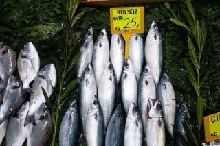 Kolyoz Balığı Nasıl Pişirilir? Nasıl Avlanır? Faydaları Nelerdir? Tarifi