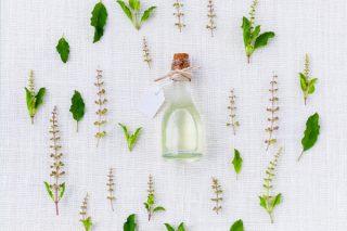 Çay Ağacı Yağı Faydaları Nelerdir? Tarifi
