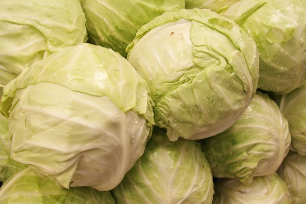 Düşük Kalorili Antioksidan Beyaz Lahana Faydaları Tarifi
