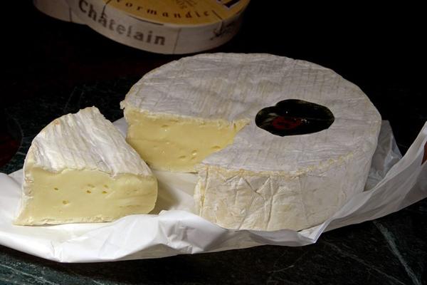 camembert peyniri fiyatı