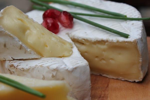 camembert peyniri