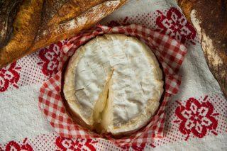 Fransız Gurme Peyniri Camembert Tarifi