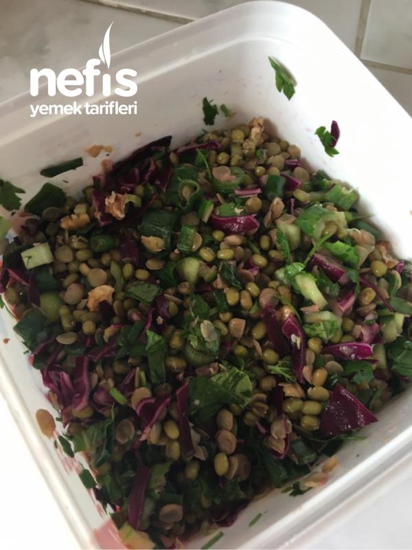 Protein Salata