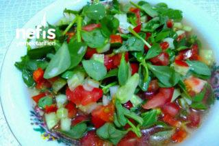 Sirkeli Semiz Salatası Tarifi