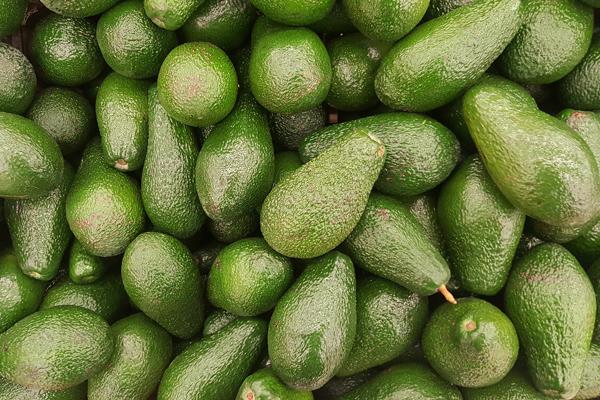 avokado yağı ne işe yarar