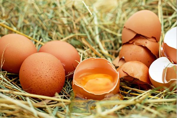 yumurta akı maskesi faydaları