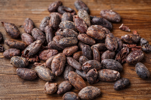 kakao çekirdeği