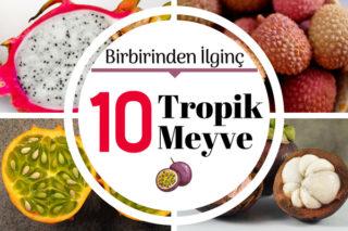 Tropik Meyveler Daha Önce Görmediğiniz 10 Değişik Meyve Tarifi