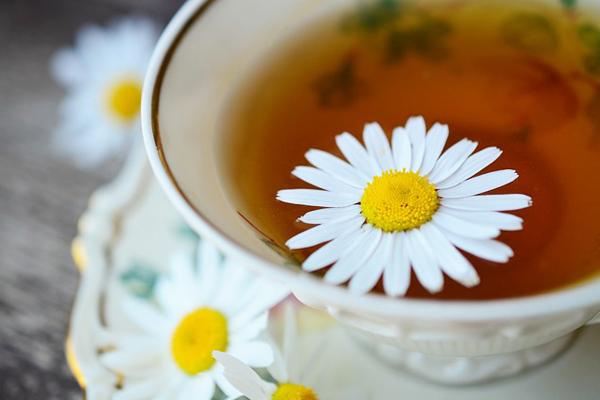 papatya çayı faydaları ve zararları
