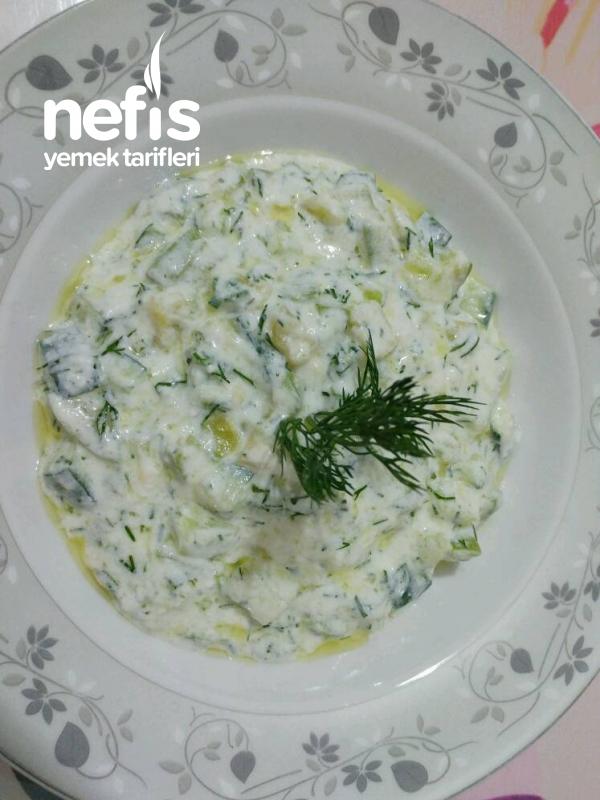 Zeytinyağlı Kabaklı Salatalıklı Efsane Yoğurtlu(yok Böyle Lezzet)