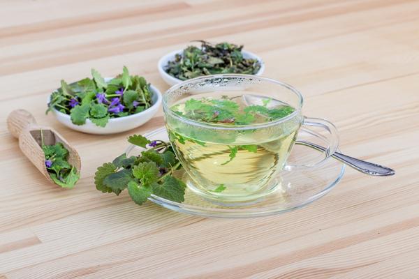ısırgan otu çayı faydaları