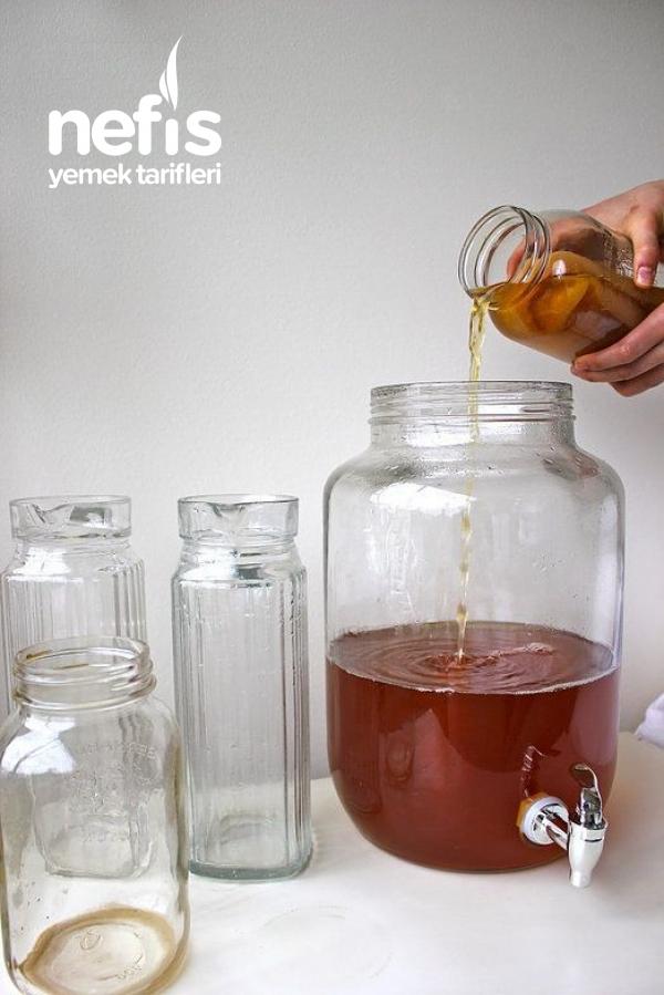 Kombucha Mantari Çayı Yapımı
