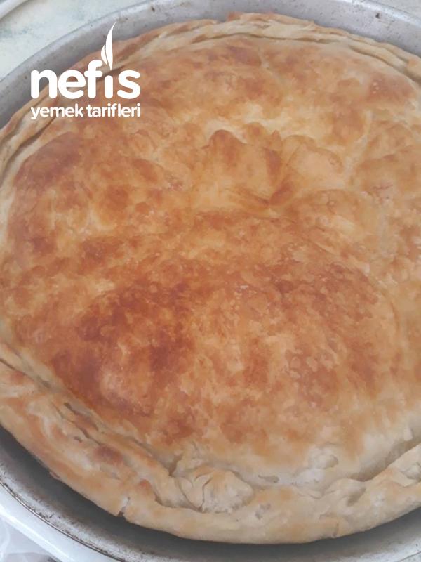 Arnavut Böreğim (Yoğurtlu Yumurtalı)