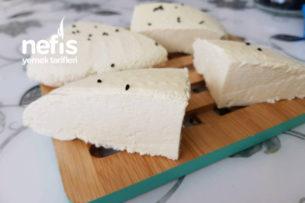Evde Beyaz Peynir Ve Lor Peynir Yapımı Tarifi