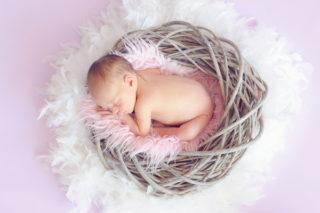 Bebek Gelişimi, Doğum Sonrası 12 Aylık Bebek Gelişim Evreleri Tarifi